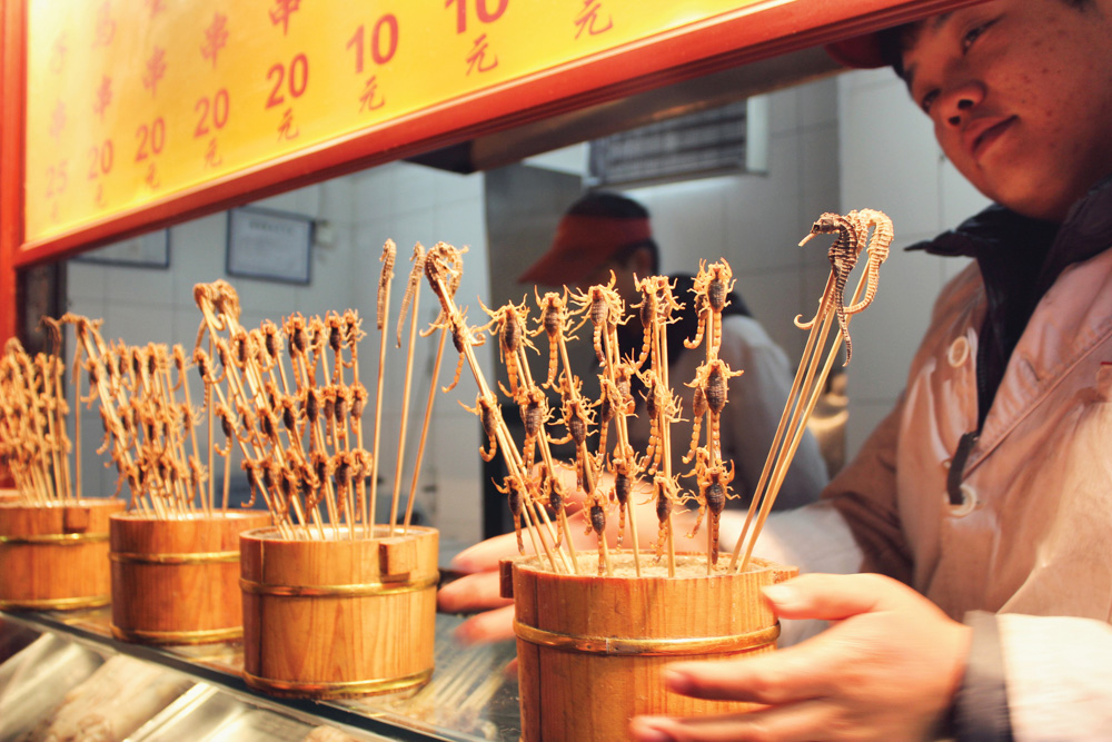 Chinese China Feast for the Senses Dim Sum Beijing Tradition Food Skewers of crispy friend scorpions, a popular snack at Wangfujing's famous night market