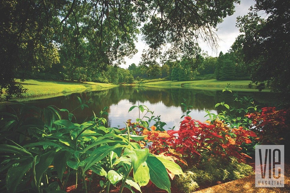 Vie Magazine Bellingrath Gardens pond surrounded by foliage Photo by Bill Weckel