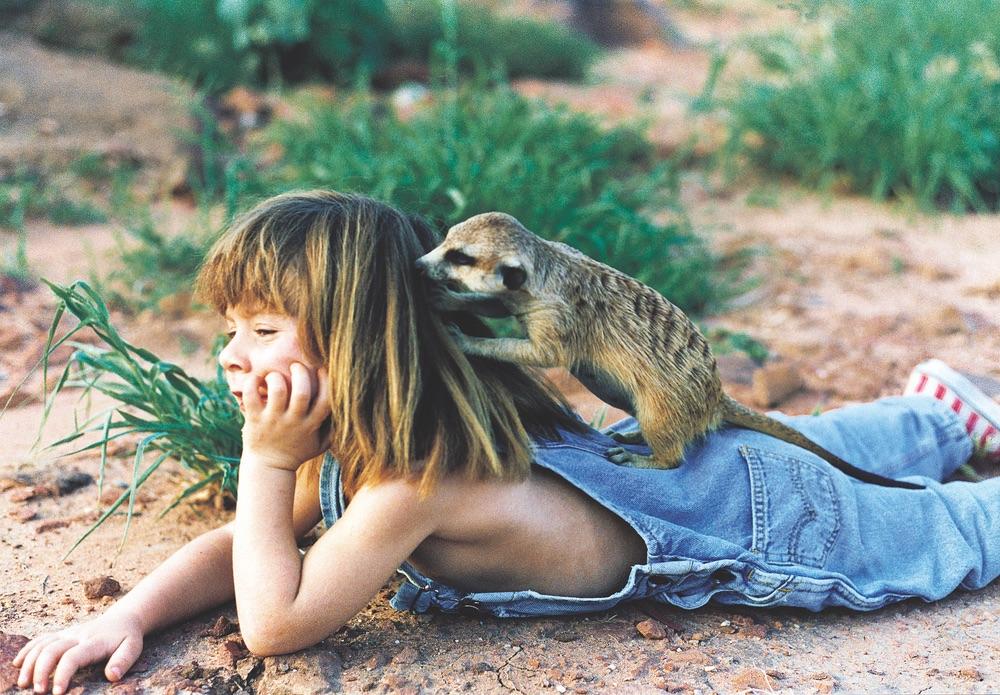 Tippi of South Africa A Real-Life Jungle Book Rebecca Barnes Sylvie Robert Leopard
