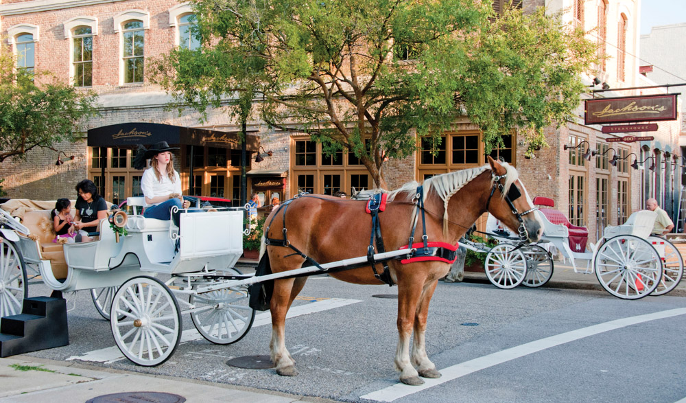 Downtown Pensacola Florida, horse and carriage