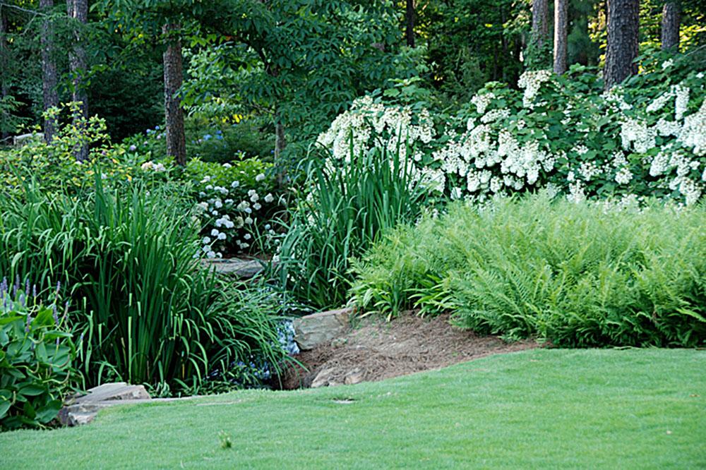 Foliage in Aldridge Gardens