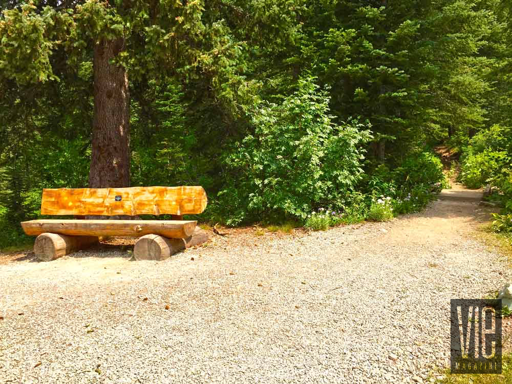 Bench made of logs in Montana Jewel Basin