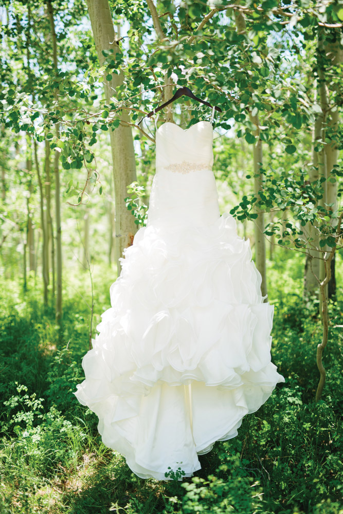 Telluride wedding dress