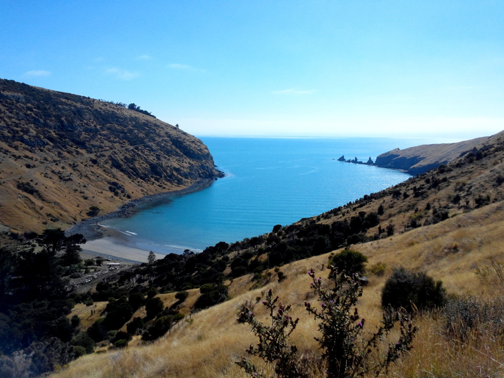 Decanter Bay on the Banks Peninsula, Akaroa, New Zealand