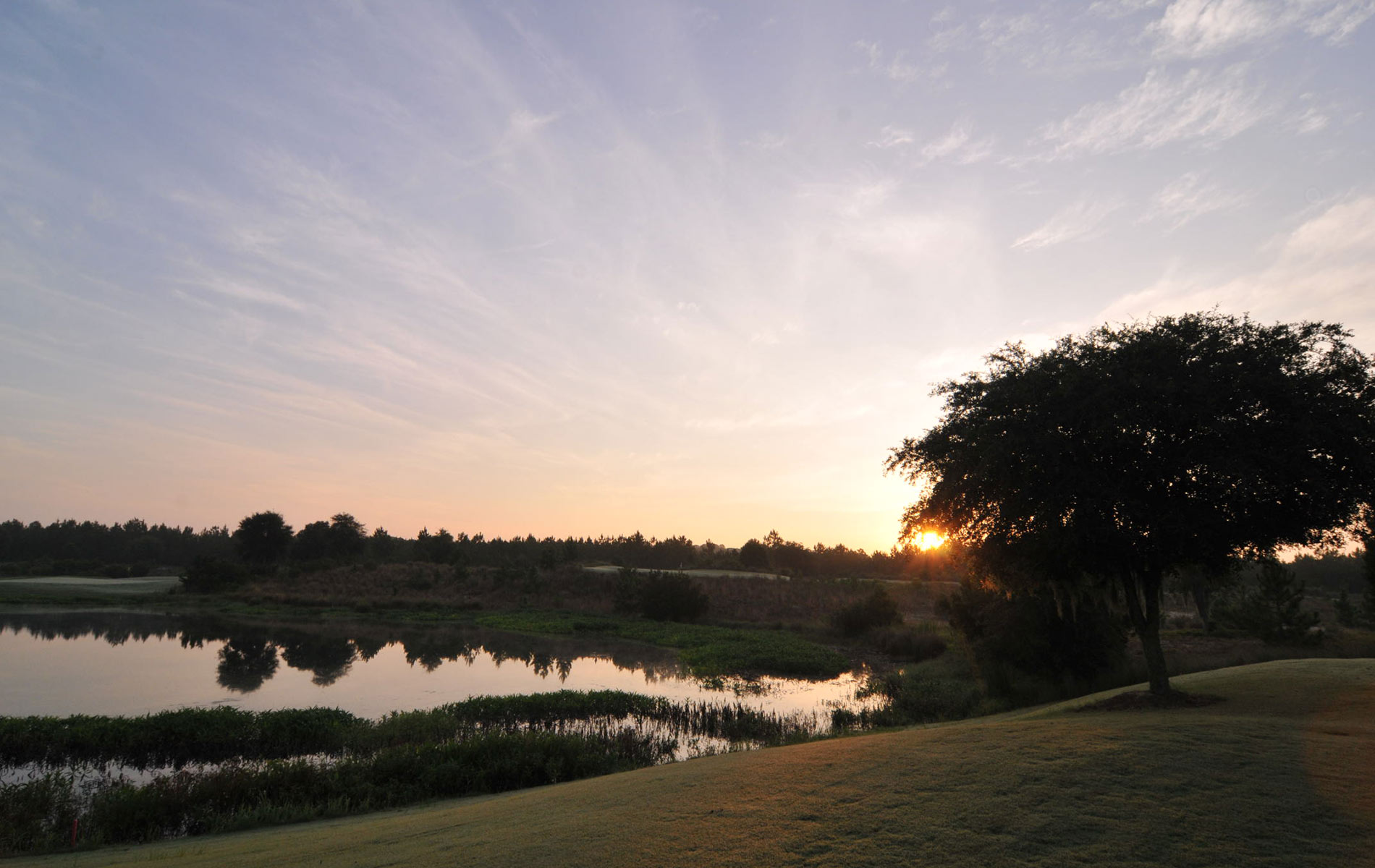 vie-magazine-camp-creek-golf