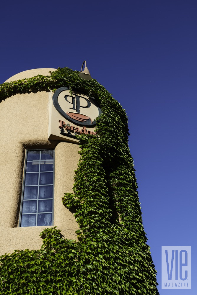 Exterior View Of Growing Ivy Against The Gateway Canyons Resort And Spa