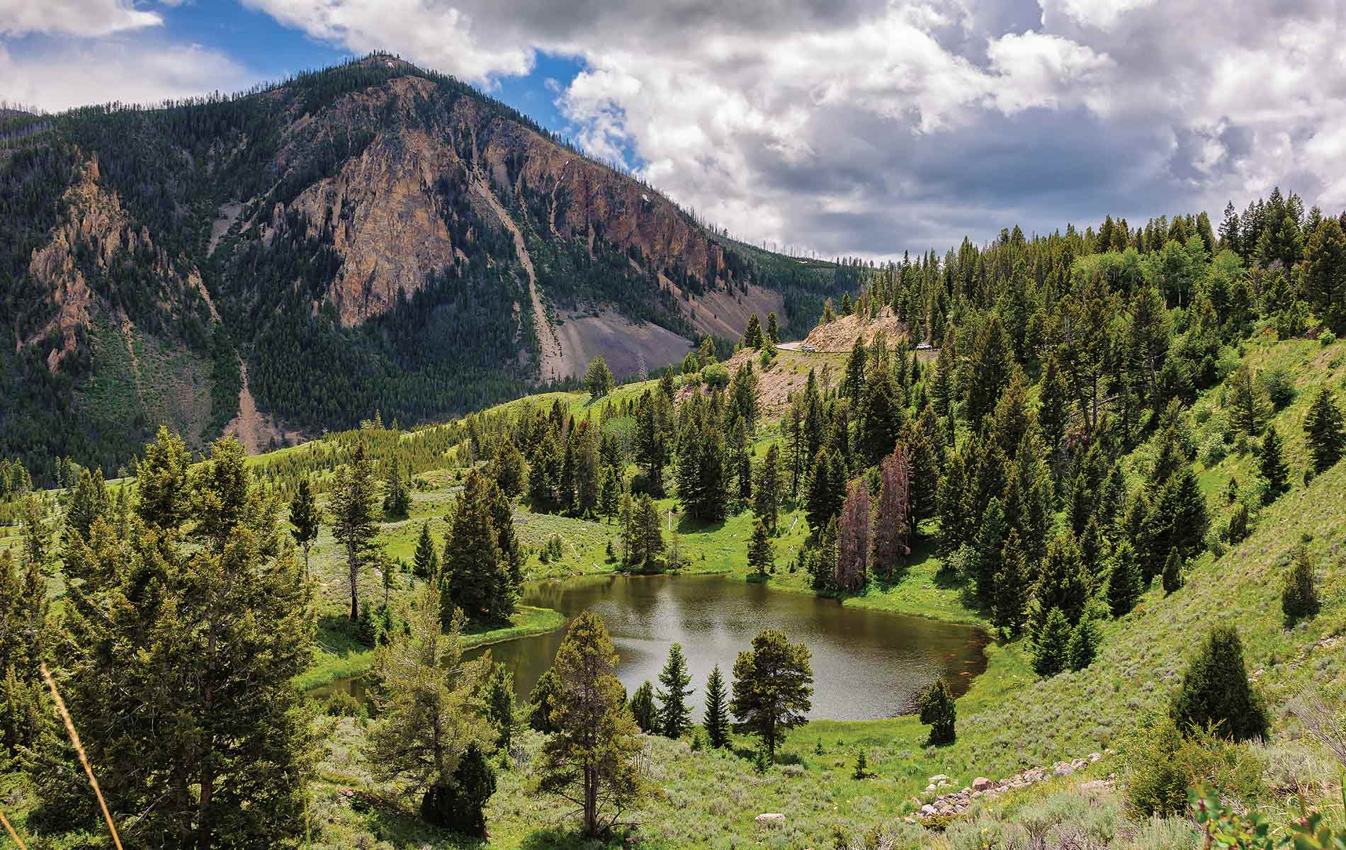 Adventures in Yellowstone National Park
