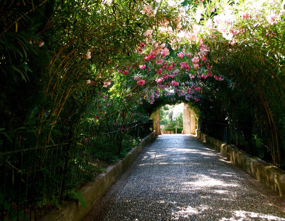 vie-magazine-southern-spain-grenada-la-alhambra-flowers
