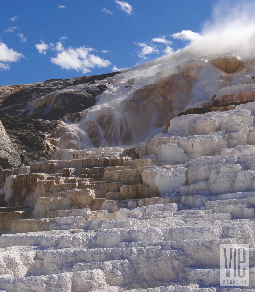 mammoth hot spring yellowstone national park