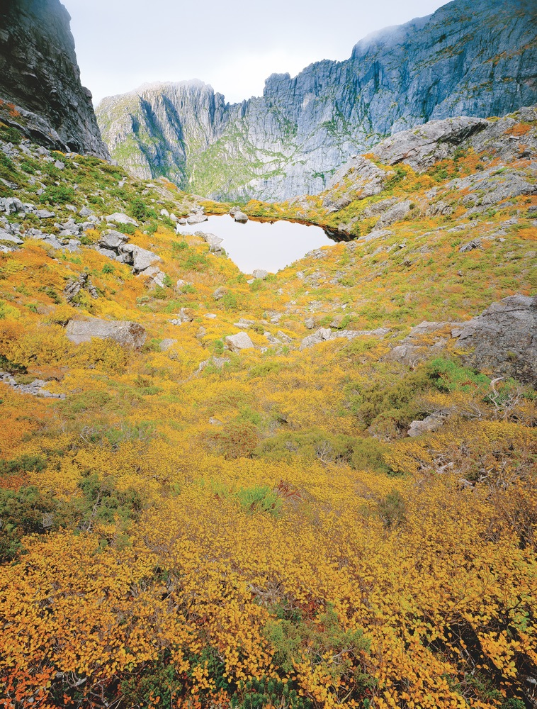 West Coast Range Tasmania Travel Autumn Colors