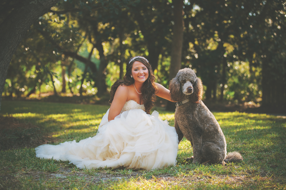 vie magazine lauren mcgill wedding poodle