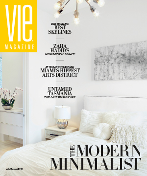 the modern minimalist issue