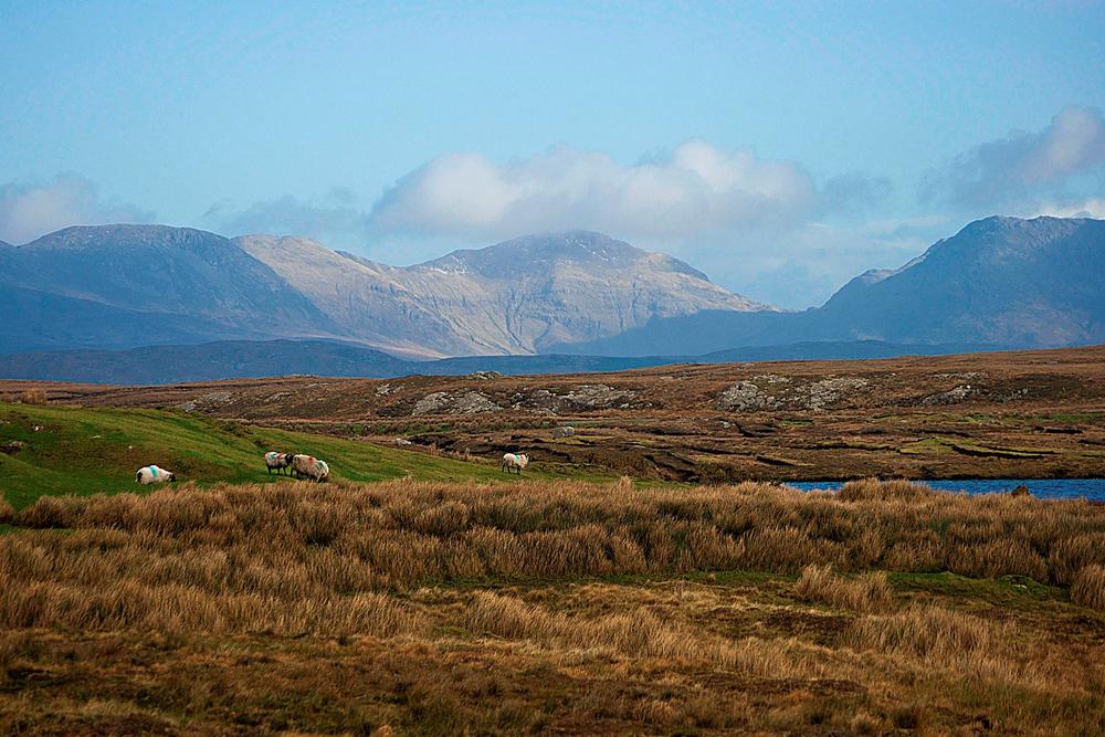 Landscape in Western Ireland Guglielmo Marconi
