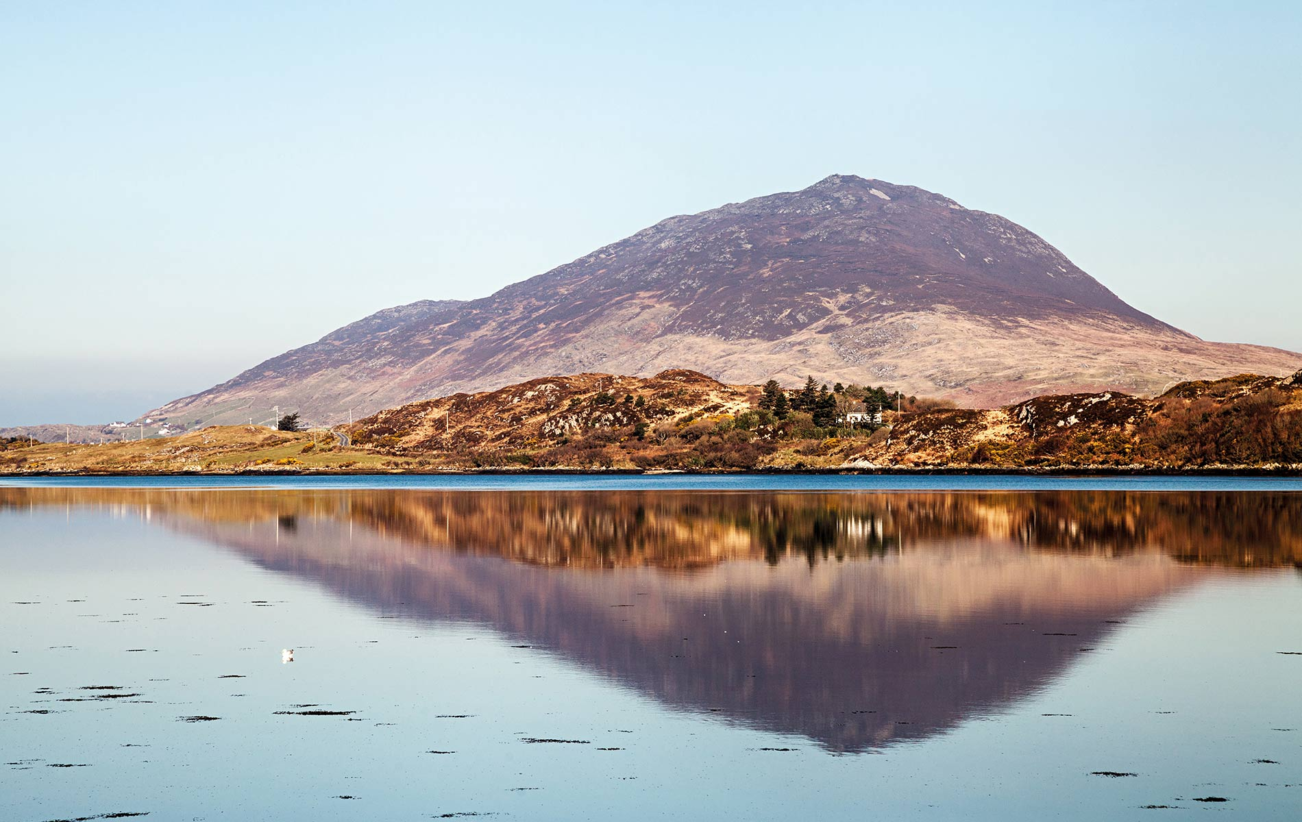 Lettermore reflecting in Ballinakill Harbour Connemara Life 2016