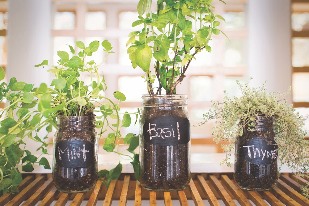 herbs17vie-magazine-diy-projects