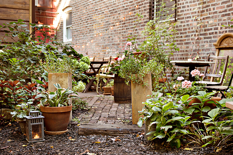 Outdoor garden patio seating at Milk and Roses restaurant in Brooklyn, New York