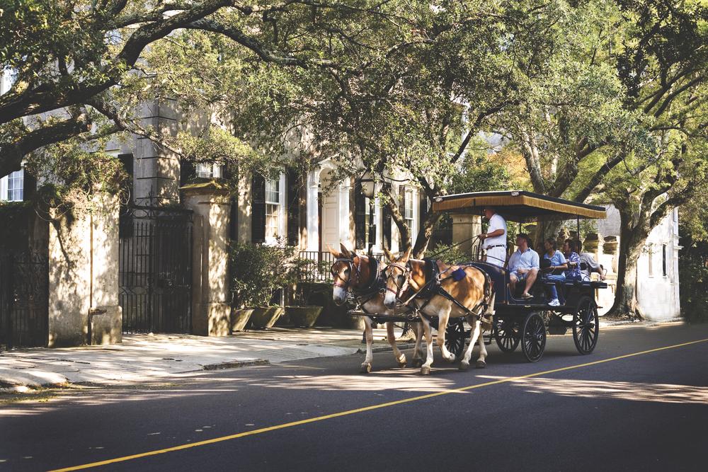 Charleston, South Carolina; carriage tour