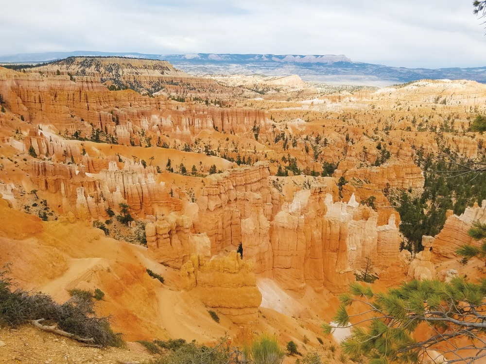 Bryce Canyon National Park in southern Utah. Photo by Greg Cayea.