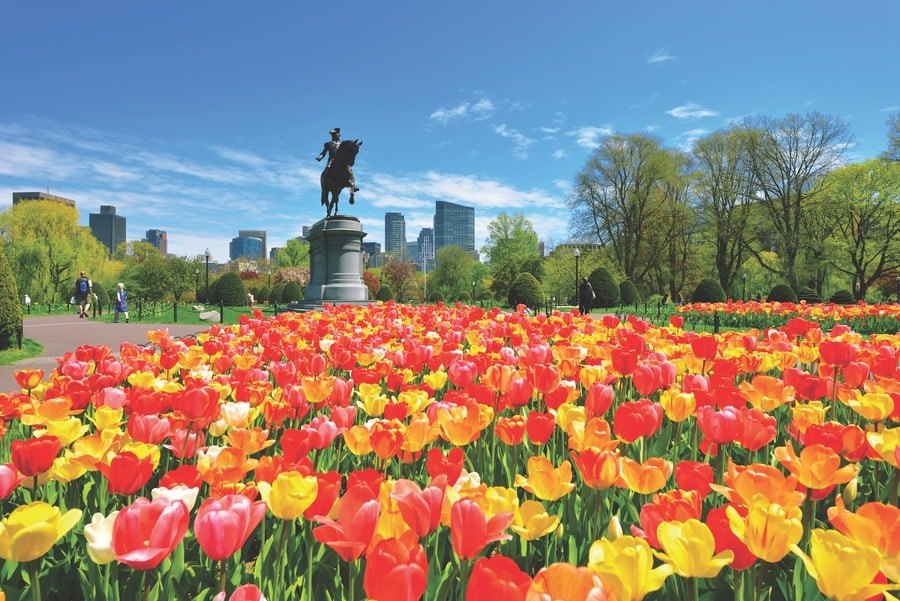 A grand statue of George Washington presides over the Boston Public Garden. VIE Magazine. The Sophisticate Issue