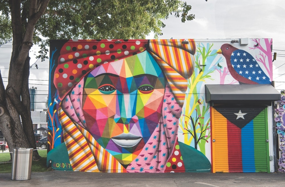 The Wynwood neighborhood is known for its vibrant art culture, galleries, shops, and eateries. Pictured here is a mural by Okudart called Asiafricalism. Photo by Martha Cooper