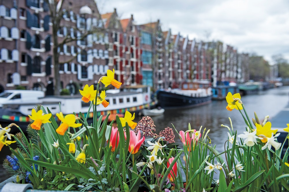 Amsterdam Food VIE Magazine Destination Travel 2018