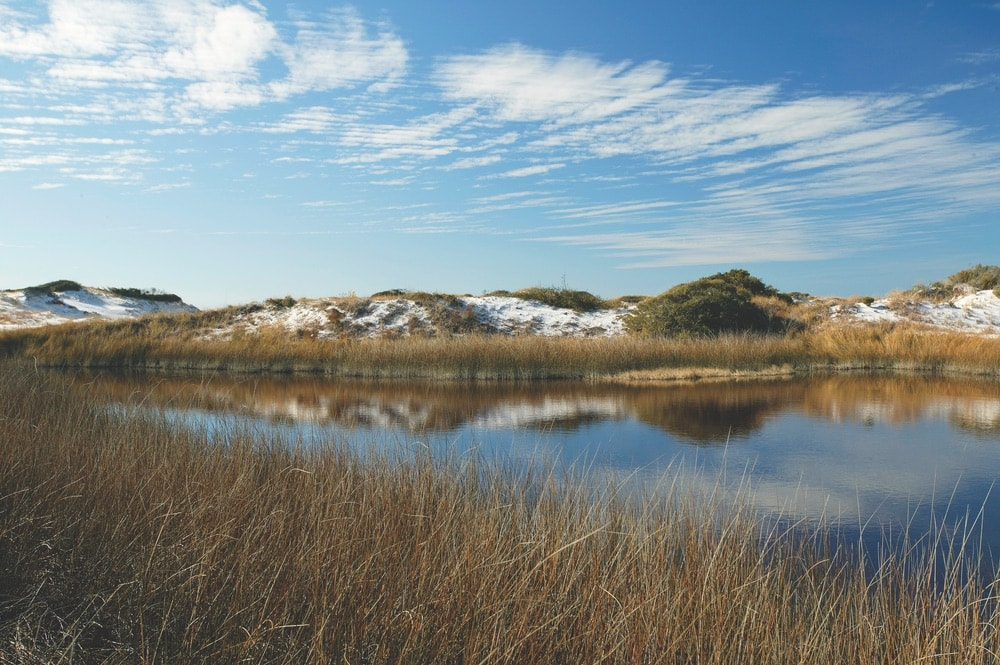 View of coastal dunes and Western Lake at the Grayton Beach State Park in Walton County, Florida