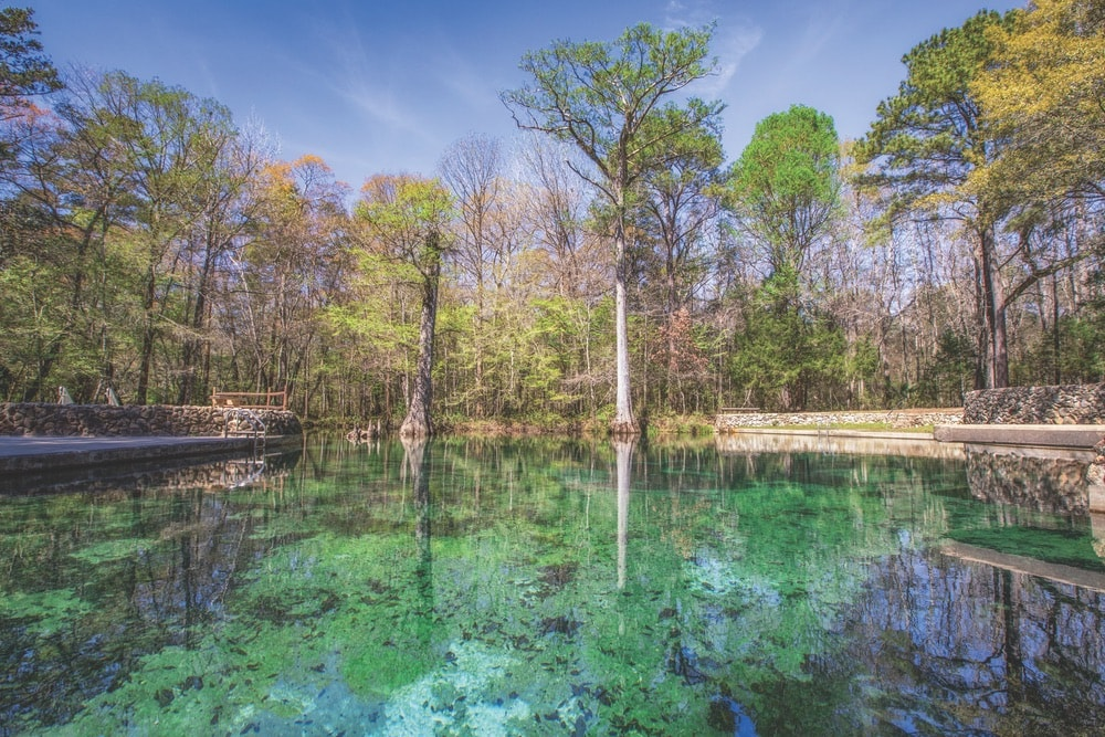 Brilliant clear waters abound at Ponce de Leon Springs State Park.
