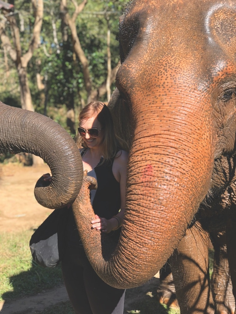 Crystal Hamon poses with one of the adorable elephants at Chai Lai Orchid elephant rescue.