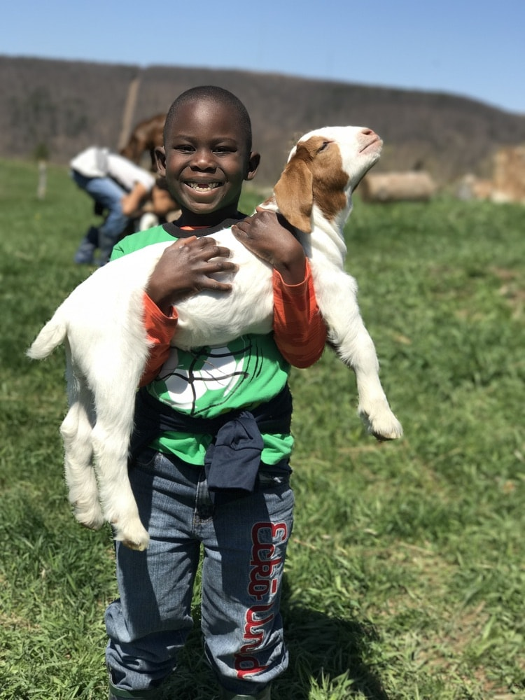 A young boy holds a goat kid during a class at ZiegenVine Homestead.