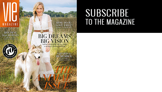 vie magazine subscribe button