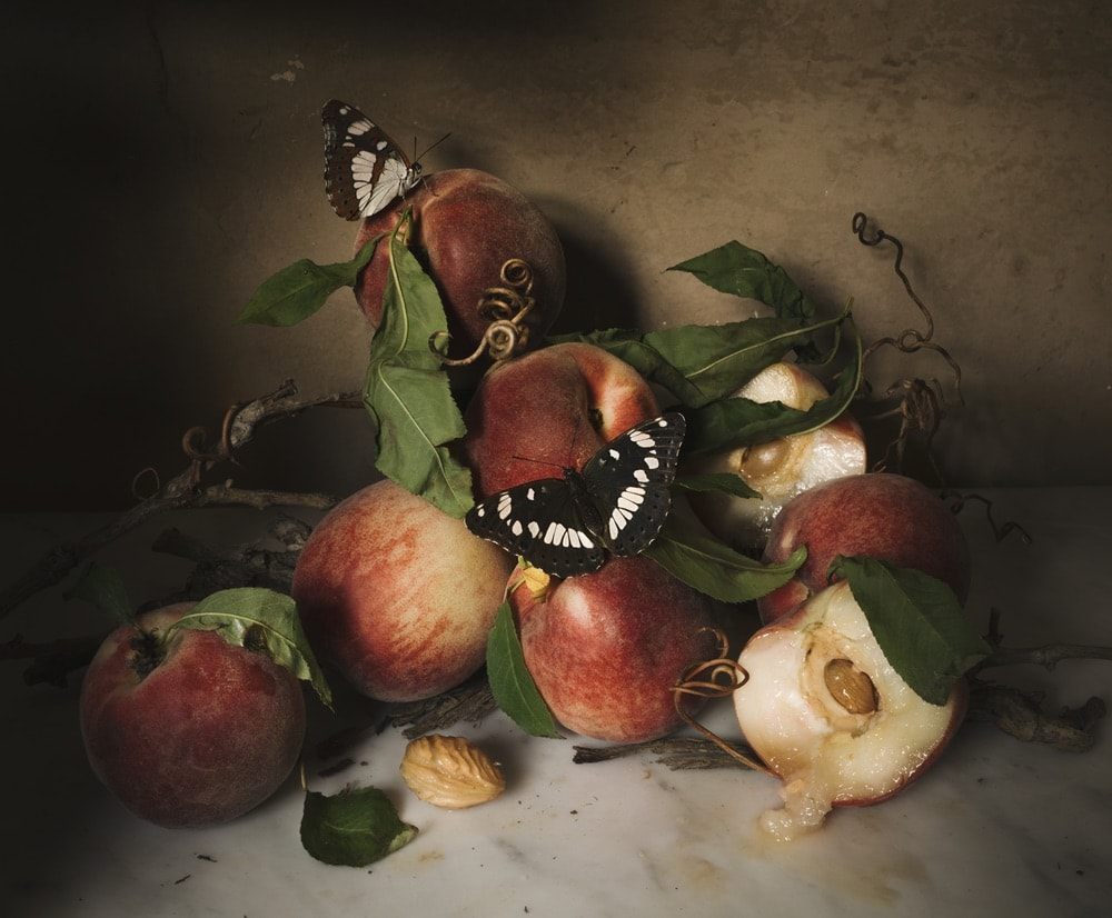 Photograph by Jamie Beck showing a still life with peaches and 2 beautiful butterflies.