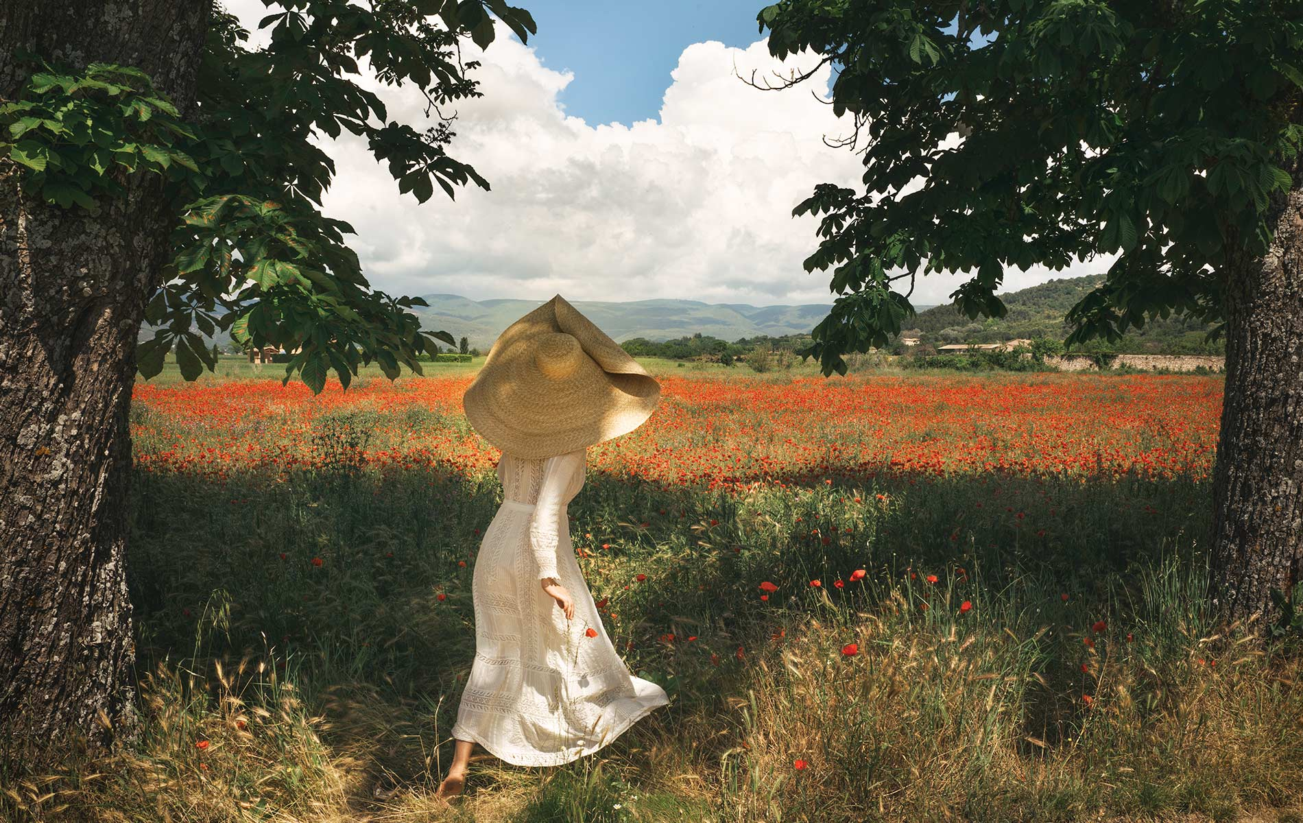 Photograph by Jamie Beck showing a woman standing in between 2 large trees looking out to a field of poppies