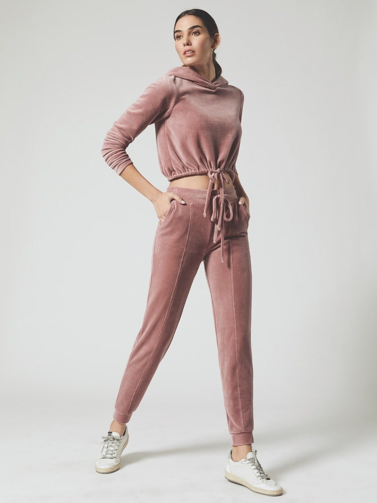 Carbon38 Year of Ours Velour Try-Out Crop Hoodie and Jogger Pants