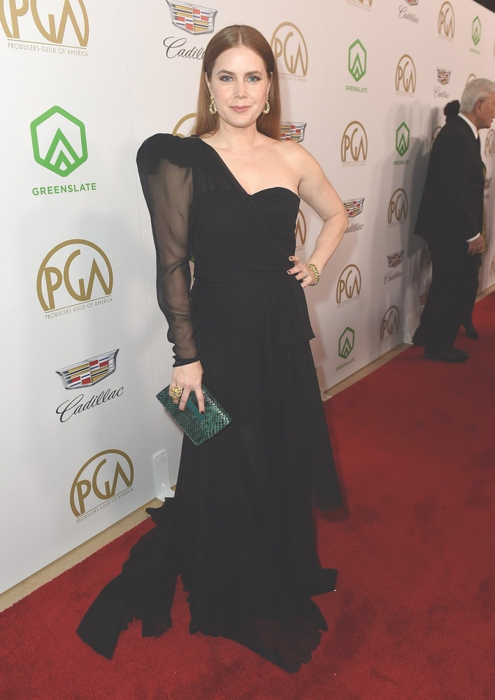 30th Annual Producers Guild Awards, Cadillac, Beverly Hilton, Beverly Hills, Amy Adams