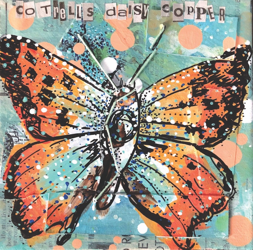 heather freitas, Chrysoritis Cotrelli (CR) Cotrell's Daisy Copper Mixed media (newspaper, old photo prints, old sketches, ink, acrylic paint, and hand embroidery) on gallery wrapped canvas, 6 × 6 in.