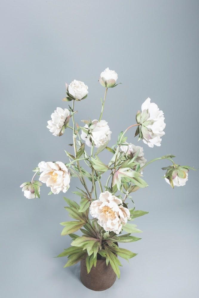 Vladimir Kanevsky Porcelain Flowers
