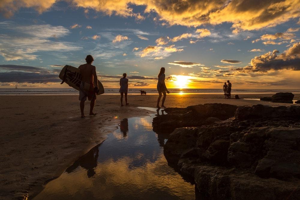 Surfari Charters