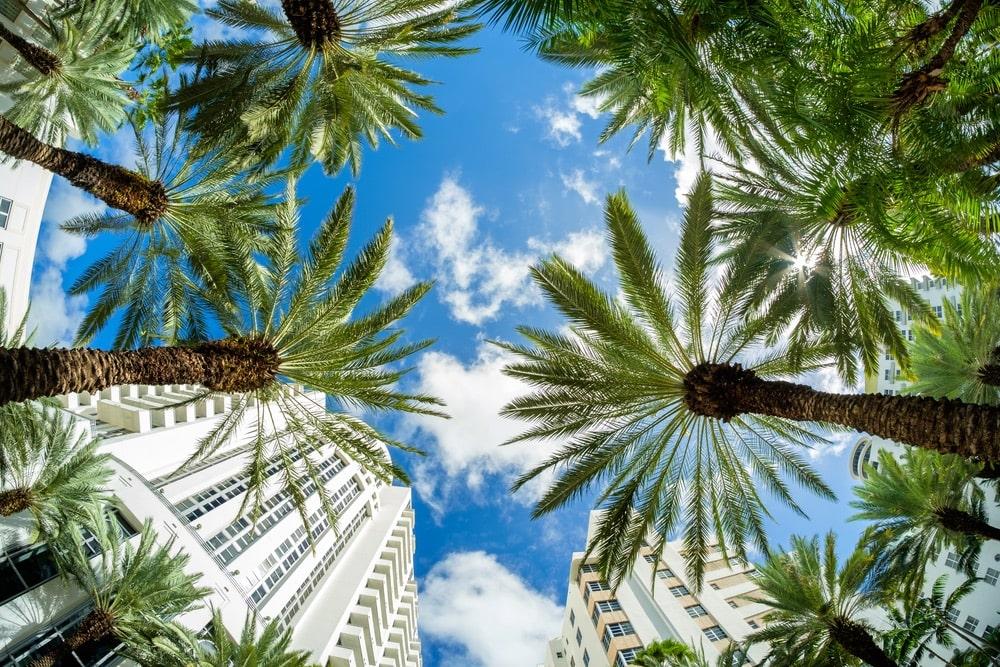 Lennox Hotel Miami Beach, Miami Florida, Miami and Beaches, Visit Miami, South Beach