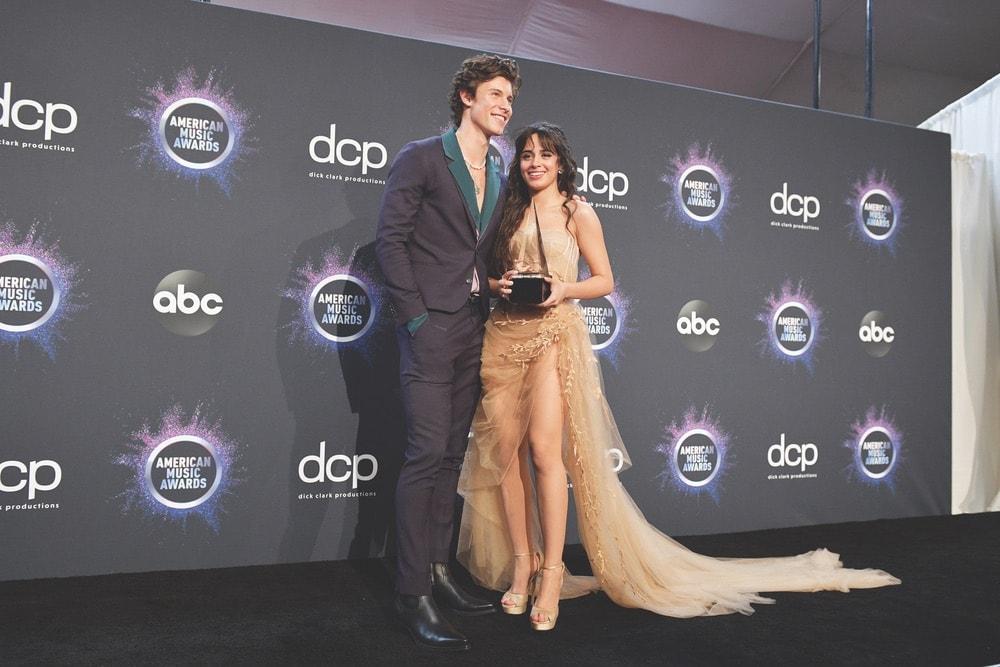 AMA Awards, 2019 AMA Awards, American Music Awards, Forty-Seventh Annual American Music Awards, The Microsoft Theater, Shawn Mendes, Camila Cabello