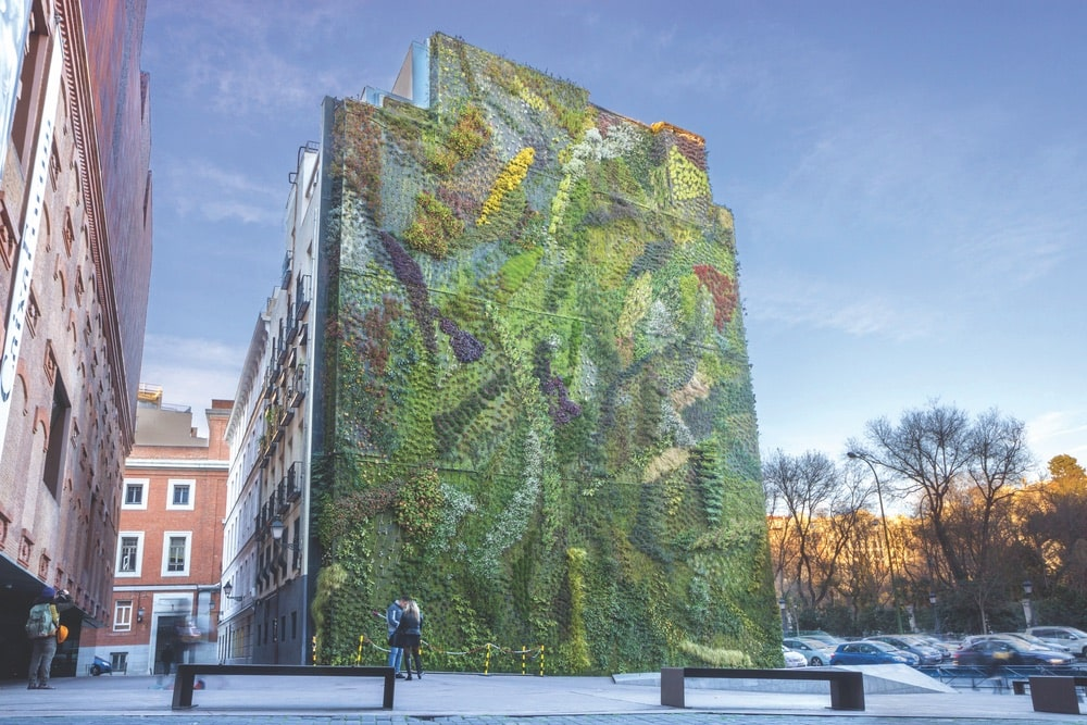 Vertical Garden Patrick Blanc
