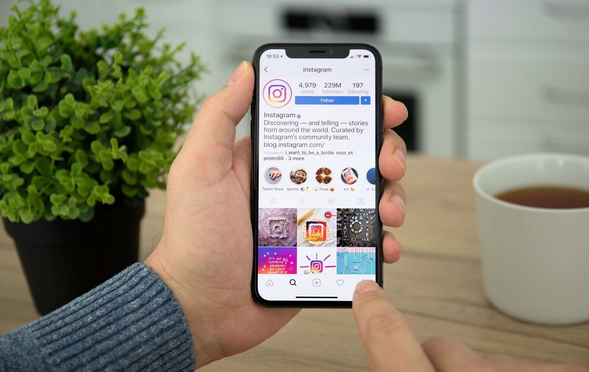 Vie Magazine, Instagram, Instagram Trends, 2020 Instagram Trends, Instagram Stories