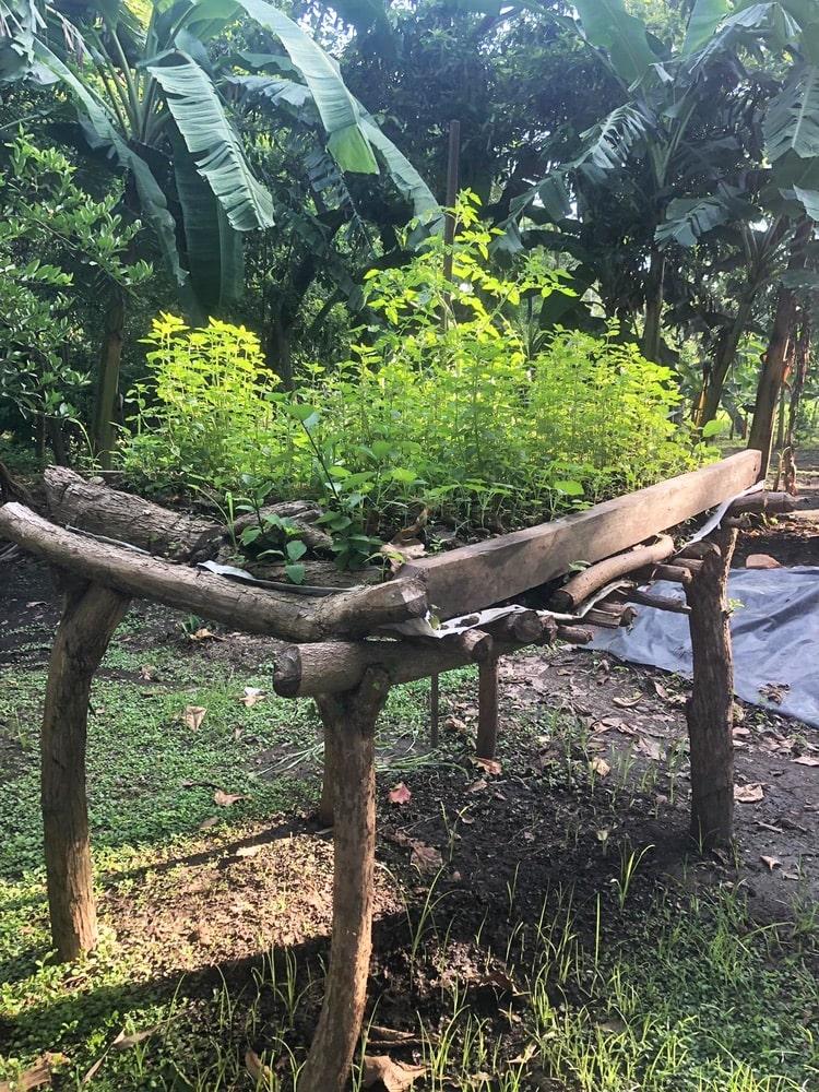 Campo Sagrado, Twelve Churches, Beau Interiors, Nourish Nicaragua