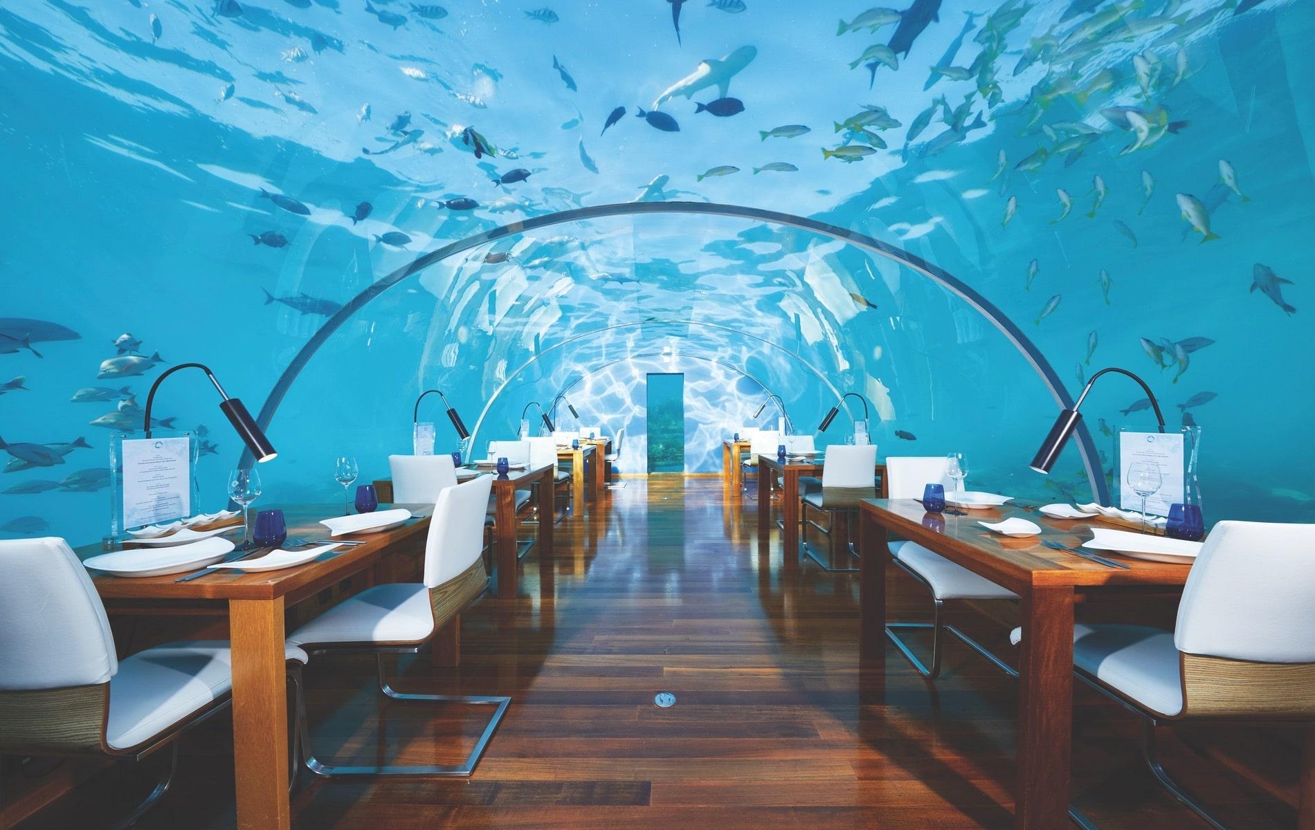 Muraka, Conrad Maldives Rangali Island, Conrad Maldives, Ithaa Undersea Restaurant, VIE Magazine