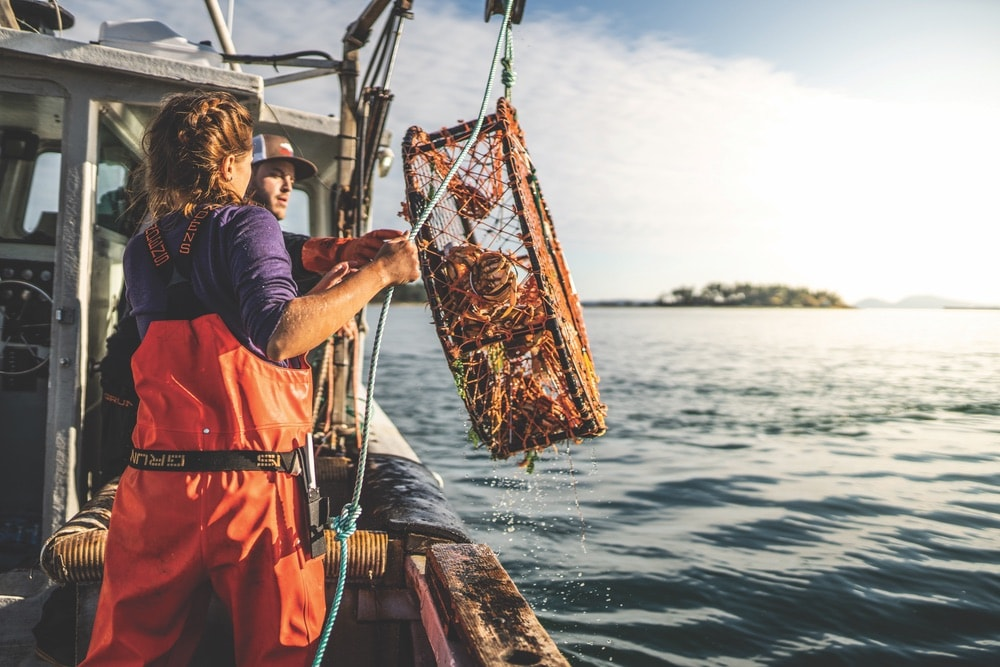Commercial Fishing, Savannah Lishnerness and Sean Dwyer reel in a crab trap from Puget Sound