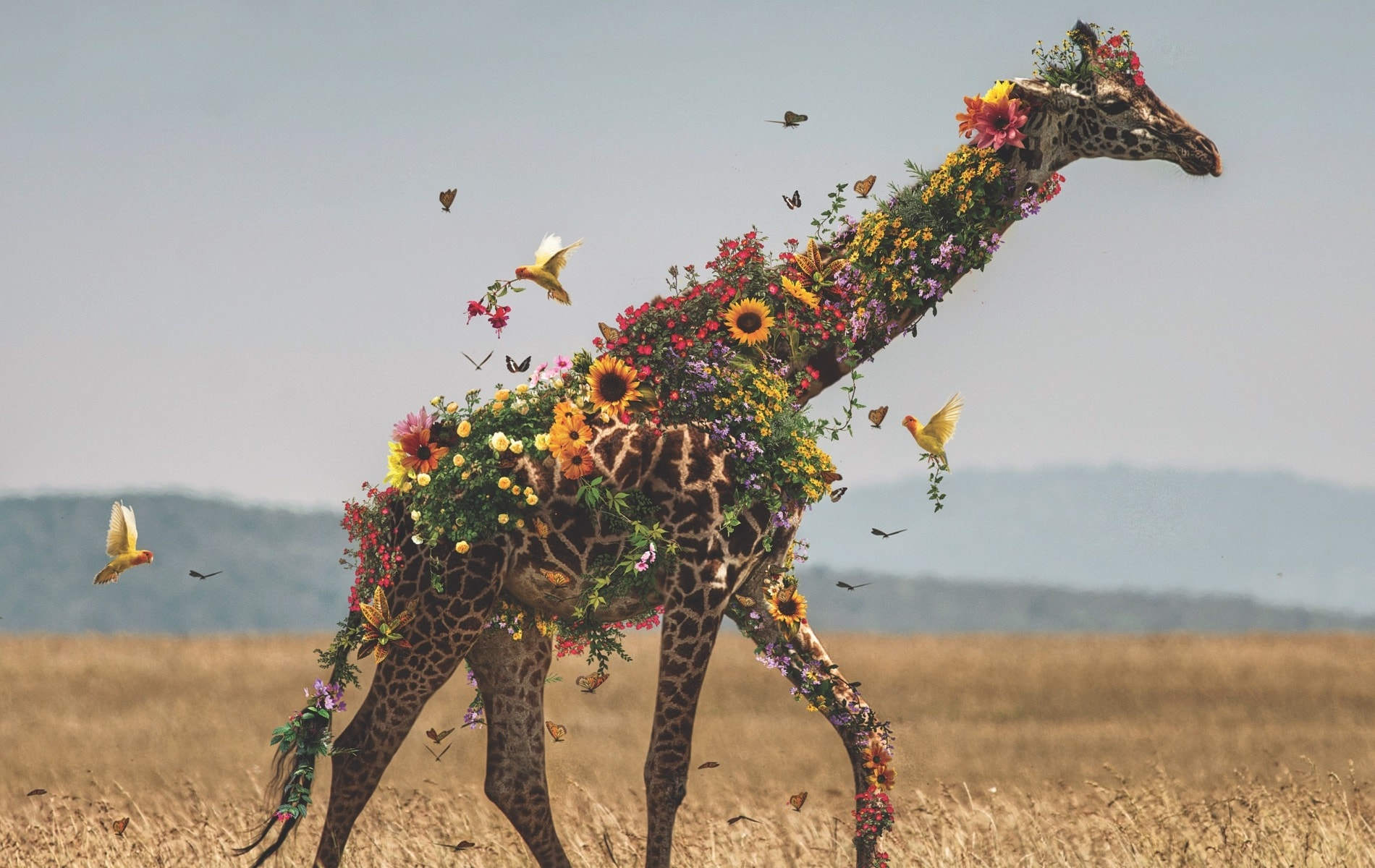 VIE Magazine L'amour Department Page, Marcel van Luit, Giraffe from The Flower Series