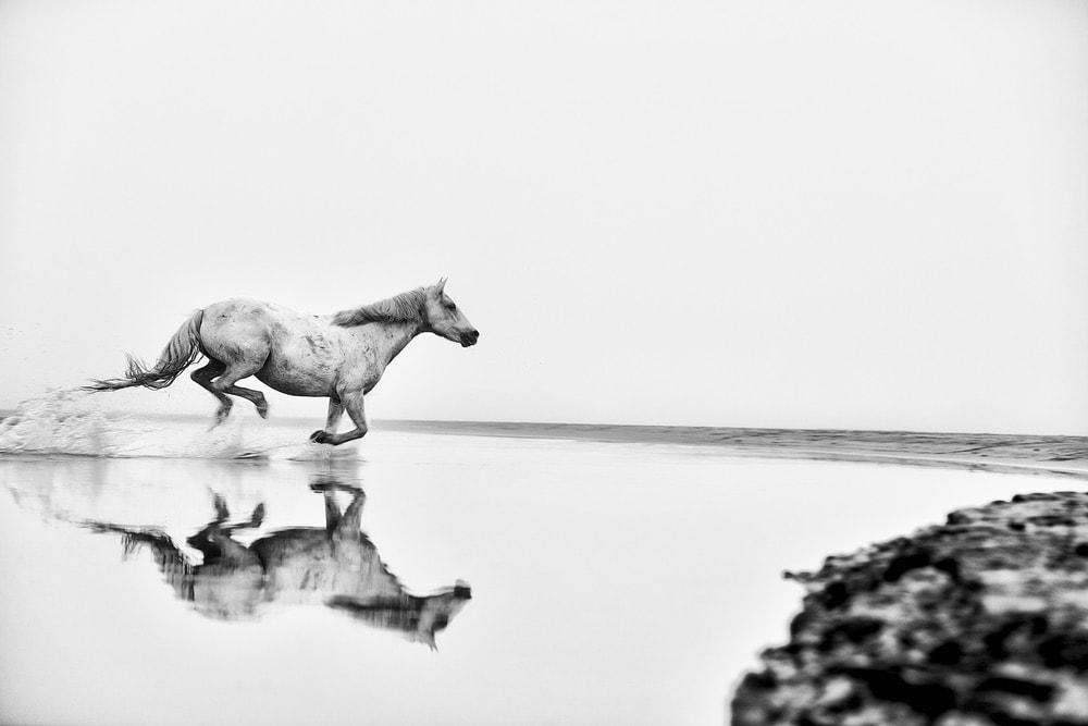 Ejaz Khan Earth Photography