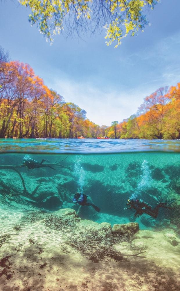 Cypress Springs, Vernon Florida, Vernon FL, natural springs