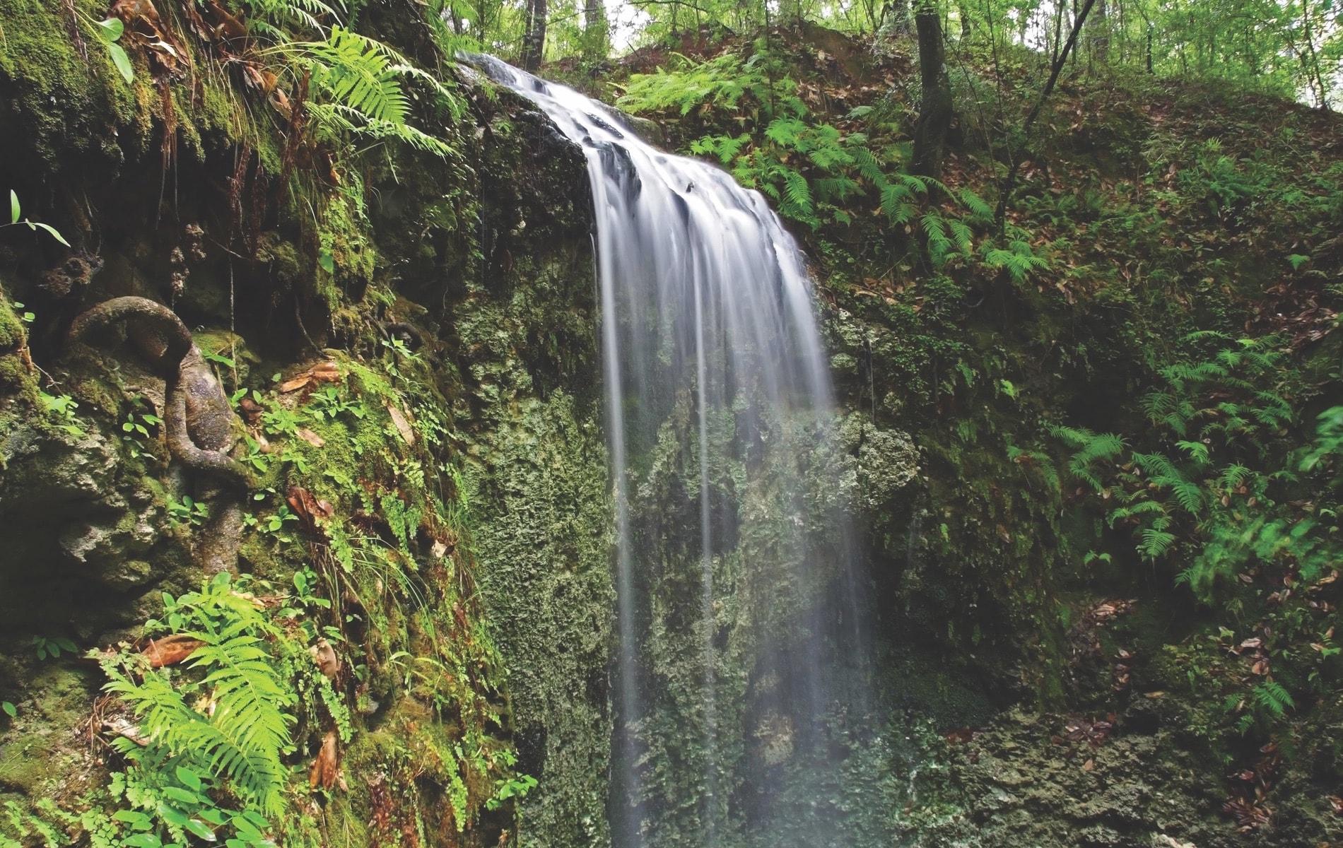 Falling Waters Falls, Chipley, Chipley FL, Chipley Florida