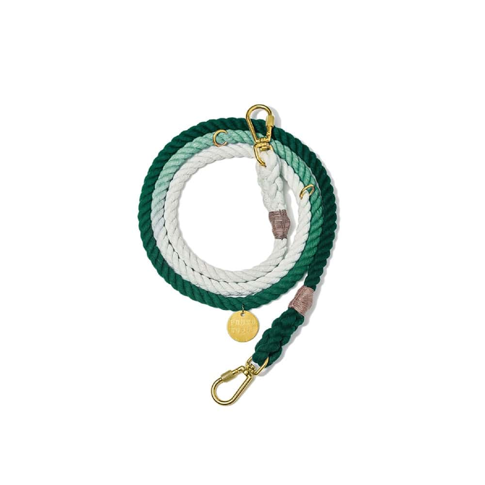 Teal Ombre Cotton Rope Dog Leash, Found My Animal