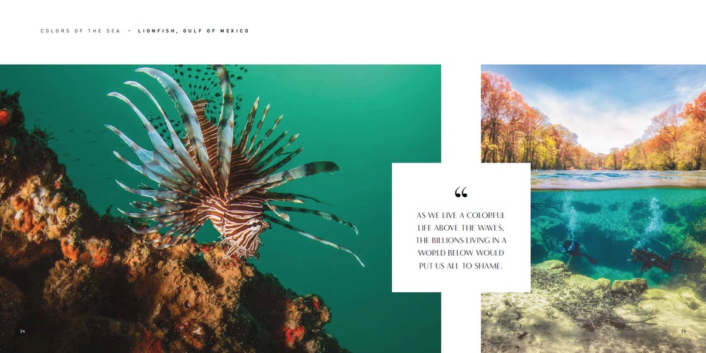 VIE Magazine, HOME—Inspirations for Home and Life by VIE, HOME by VIE, Diving, Lionfish